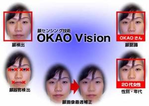 Vision 1P